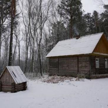 Поліський заповідник взимку