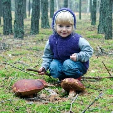 Осінь в поліському заповіднику