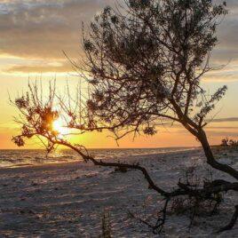 Осіннє сонце Кінбурна