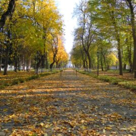 Золота осінь чернігівських парків