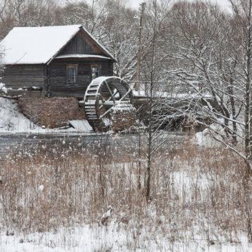 Зима в Поліському заповіднику