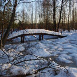 Зима в Міжрічинському парку