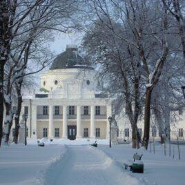 Зимова казка чернігівських парків